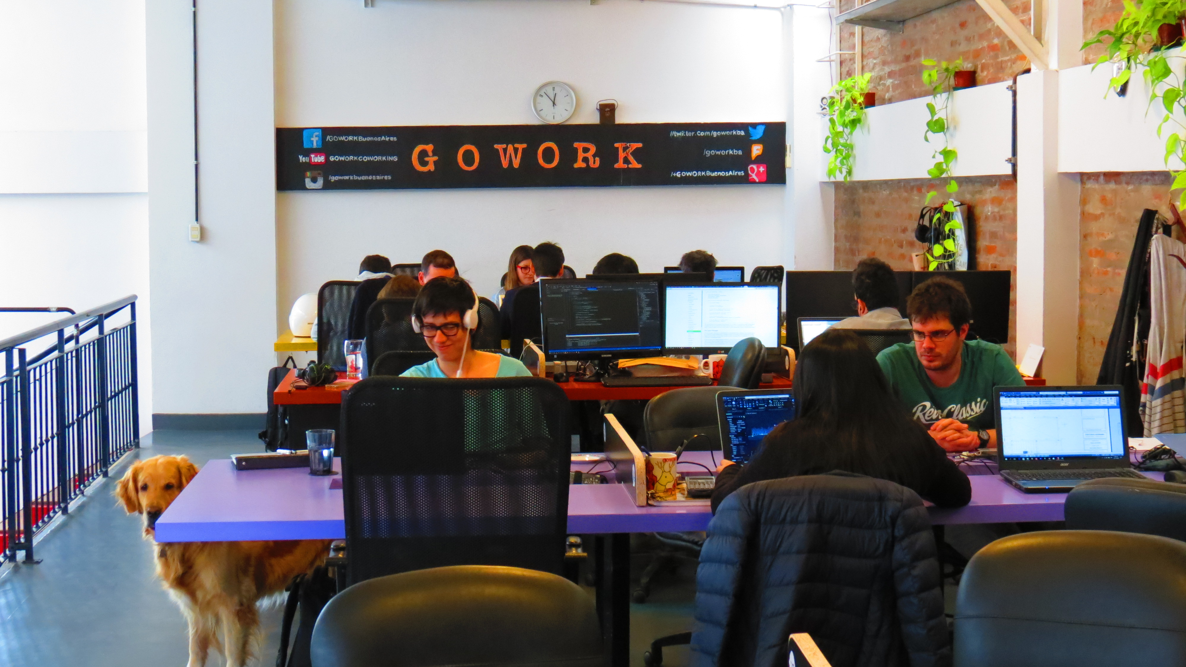 GOWORK COWORKING - open space